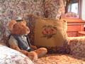 Teddy at Lukáš's cottage