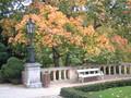 Autumn stills