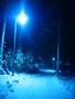 Finský les by night